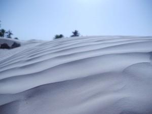 Saharadüne
